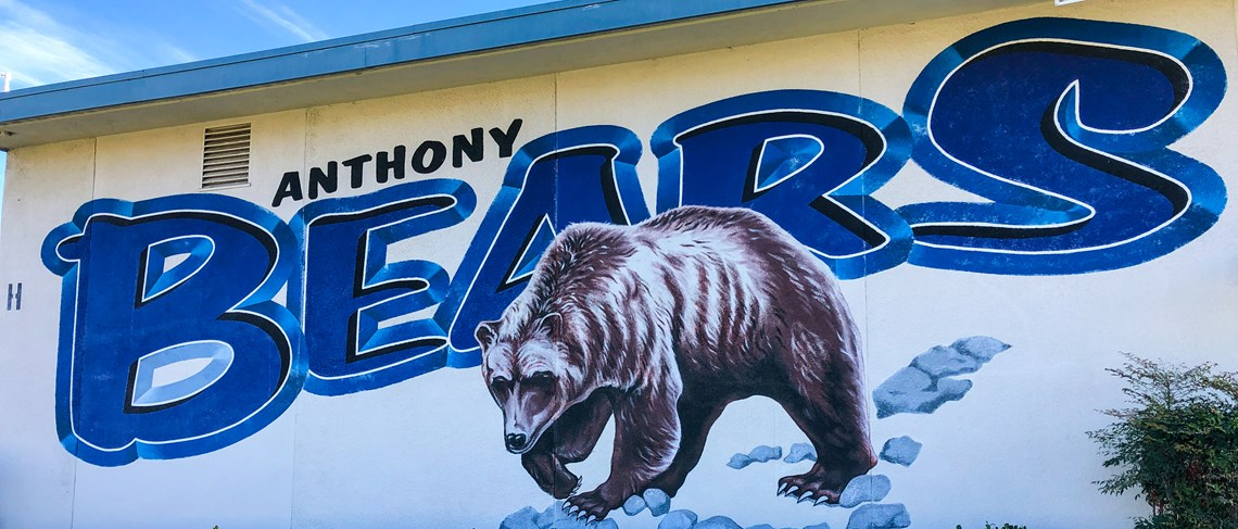 Anthony Bears