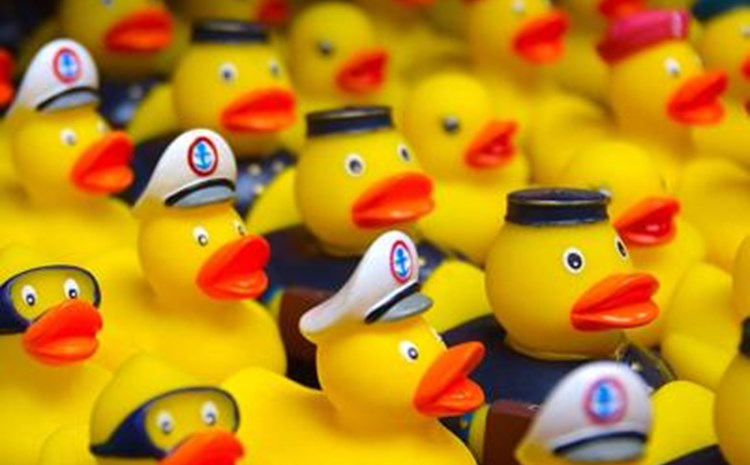 Rubber Ducky Barbecue - article thumnail image